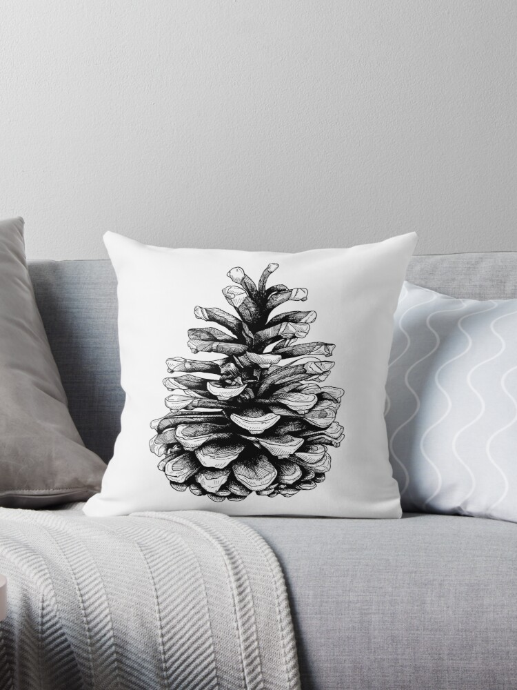 Fir Cone Pen and Ink Drawing by Adam Regester