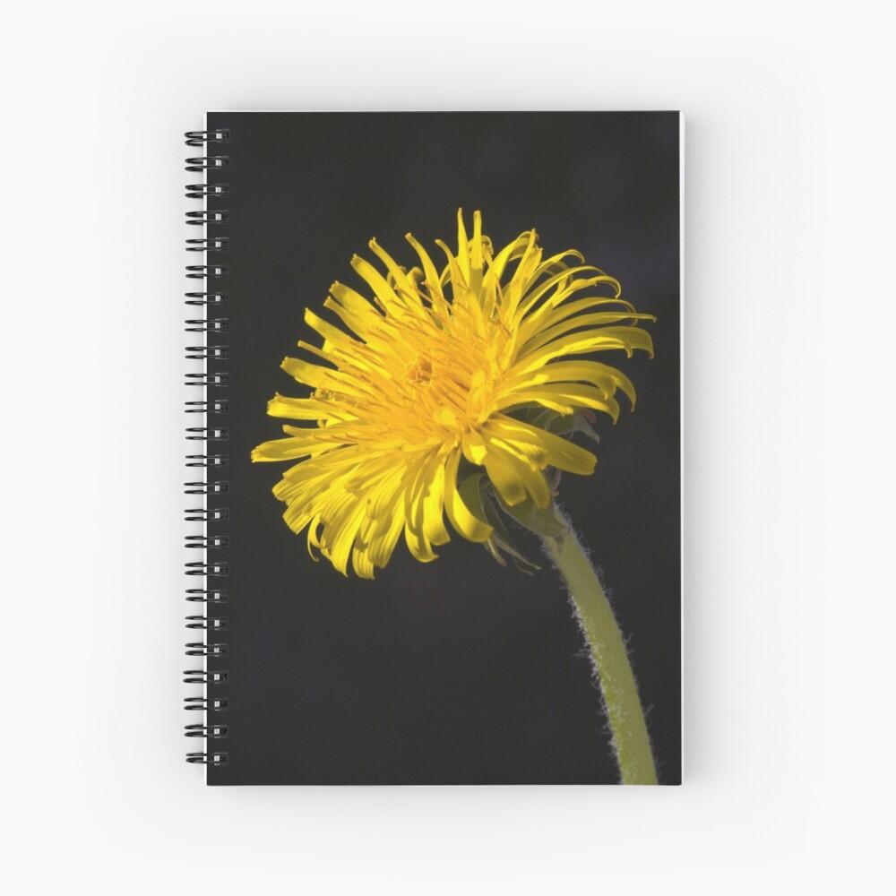 Dandelion (Taraxacum officinale) Spiral Notebook