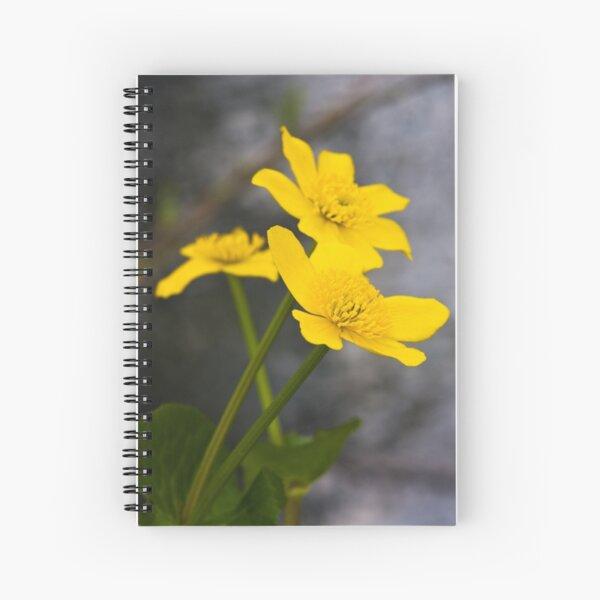 Lesser Celandine (Ranunculus ficaria) Spiral Notebook