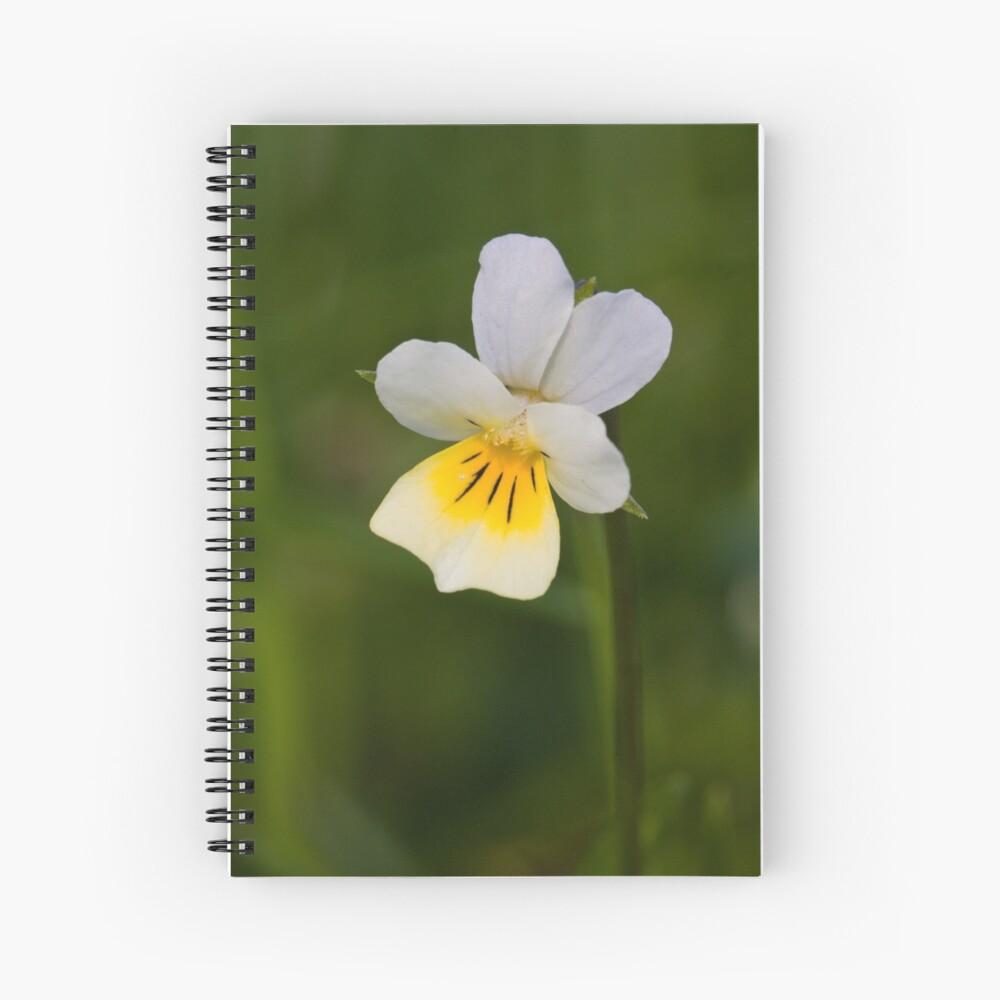 Field Pansy (Viola arvensis) Spiral Notebook