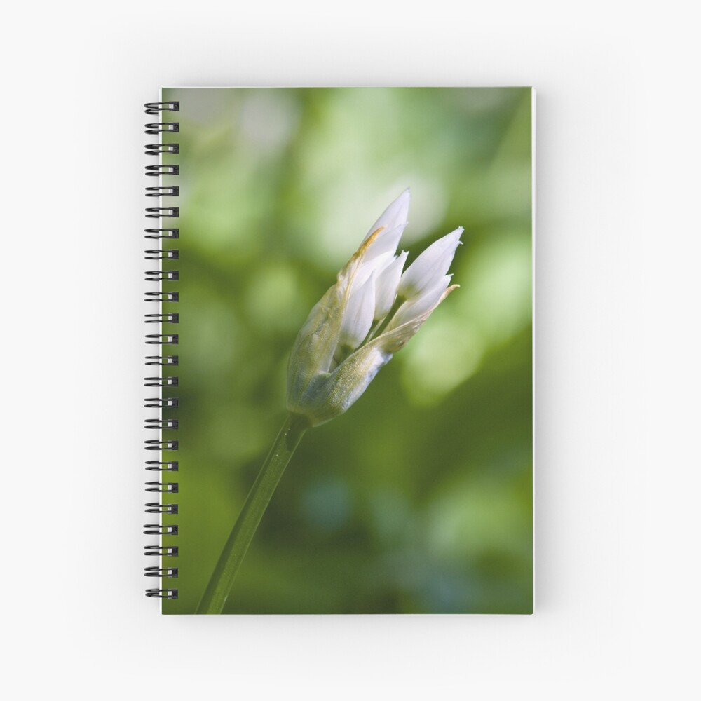Ramson Bud (Alium Ursinum) Spiral Notebook