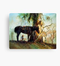 Squatter Scout - Waltzing Matilda Series Canvas Print