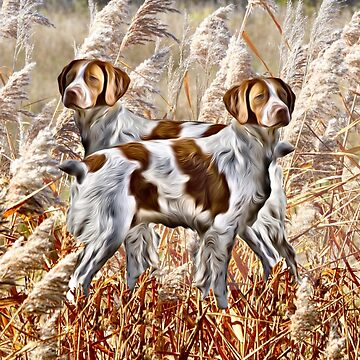 Two Brittany Spaniels by IowaArtist
