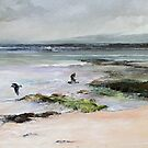 Oyster Catchers - Seascape South Eastern South Australia by Pieter Zaadstra