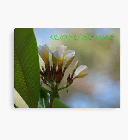 Tropical Frangipani Christmas Card Canvas Print