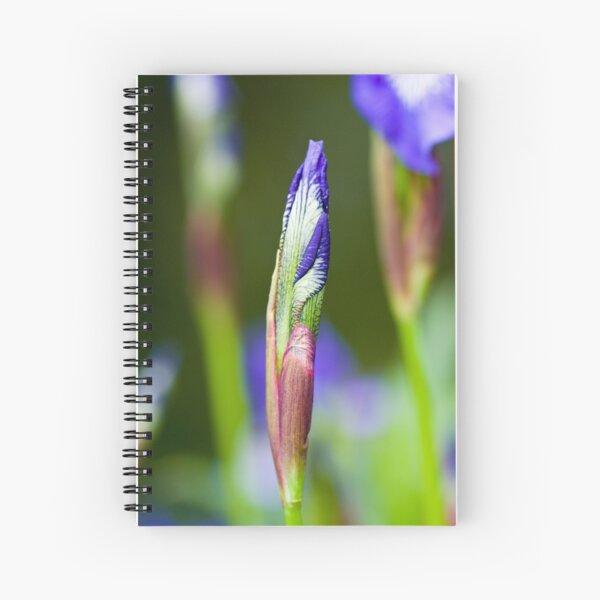 Purple Iris Bud (Iris versicolor) Spiral Notebook