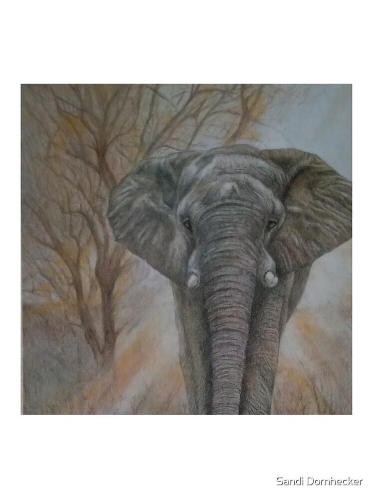 "Bull elephant ""Morning Stroll"" by SandiDornhecker"