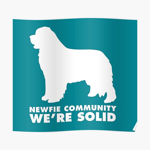 Newfie Community: We're Solid Poster