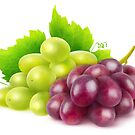 Grapes by 6hands
