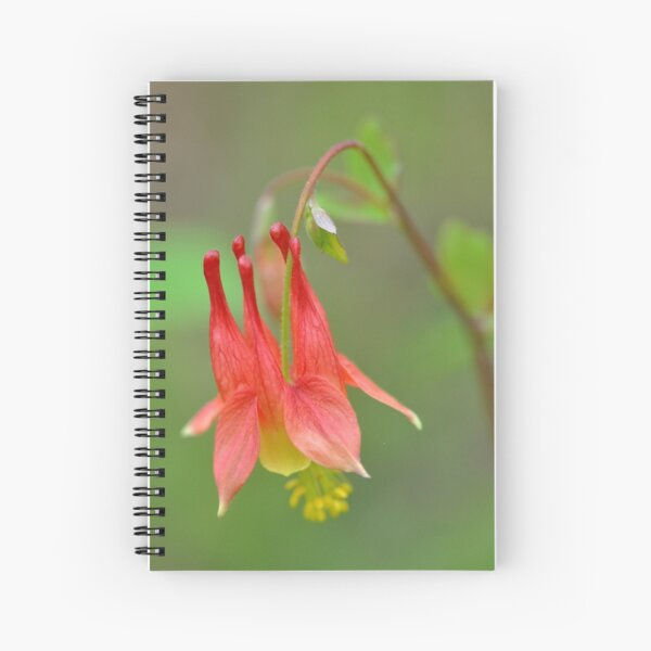 Wild Columbine Spiral Notebook