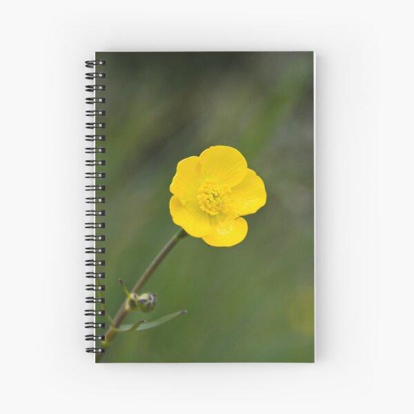 Meadow Buttercup (Ranunculus acris) Spiral Notebook