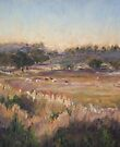 Nundle, late afternoon by Terri Maddock
