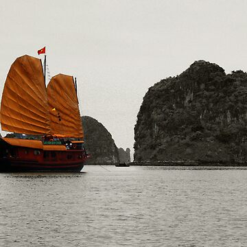 Halong Bay Junk by Duncs