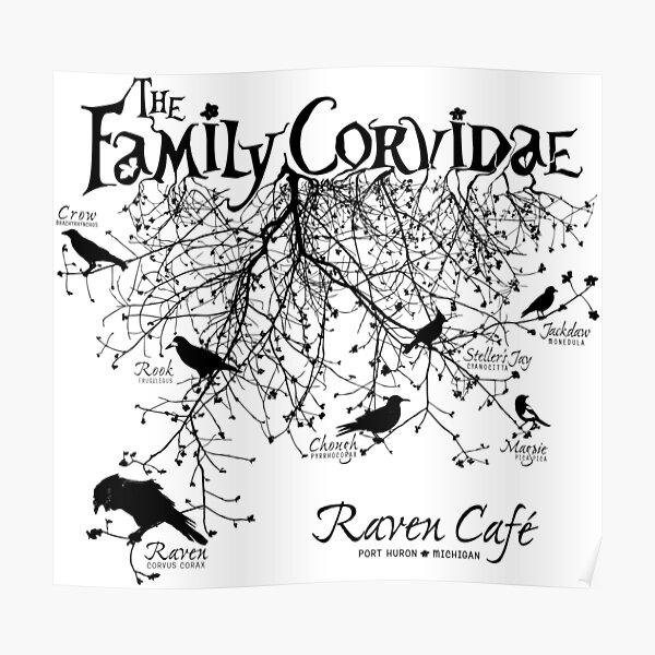 The Family Corvidae  Poster