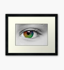 Macro Multi Colour Eye Framed Print