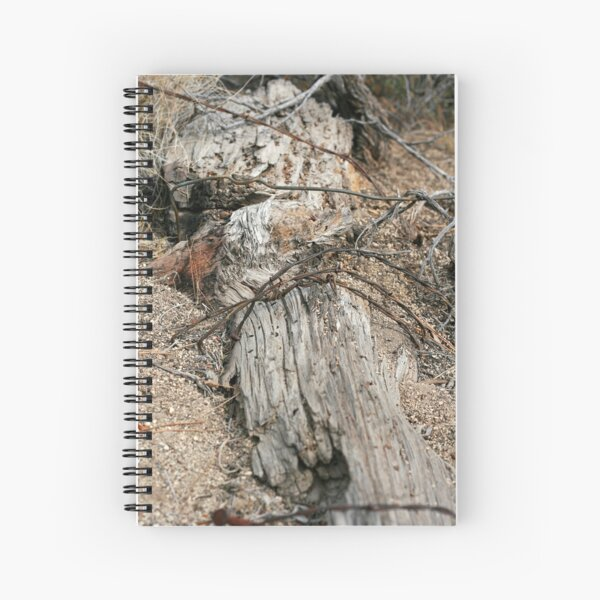 Twisted Barbed Spiral Notebook