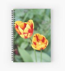 """""""Two Tone Tulips"""" Spiral Notebook"""