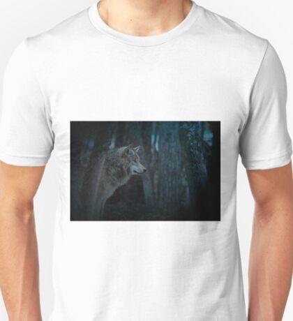 Night Visitor 3 - Psuedo Night Shot PS3 T-Shirt