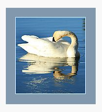 Matted Icy Reflection Photographic Print