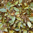 Garden Leaves by Looly Elzayat
