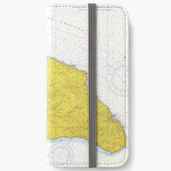 Vintage Map of Santa Catalina Island CA (1972) iPhone Wallet