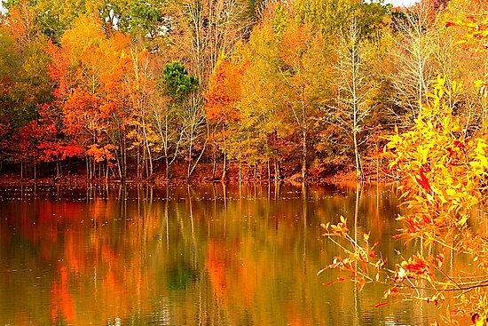 Autumn Pond by JGetsinger