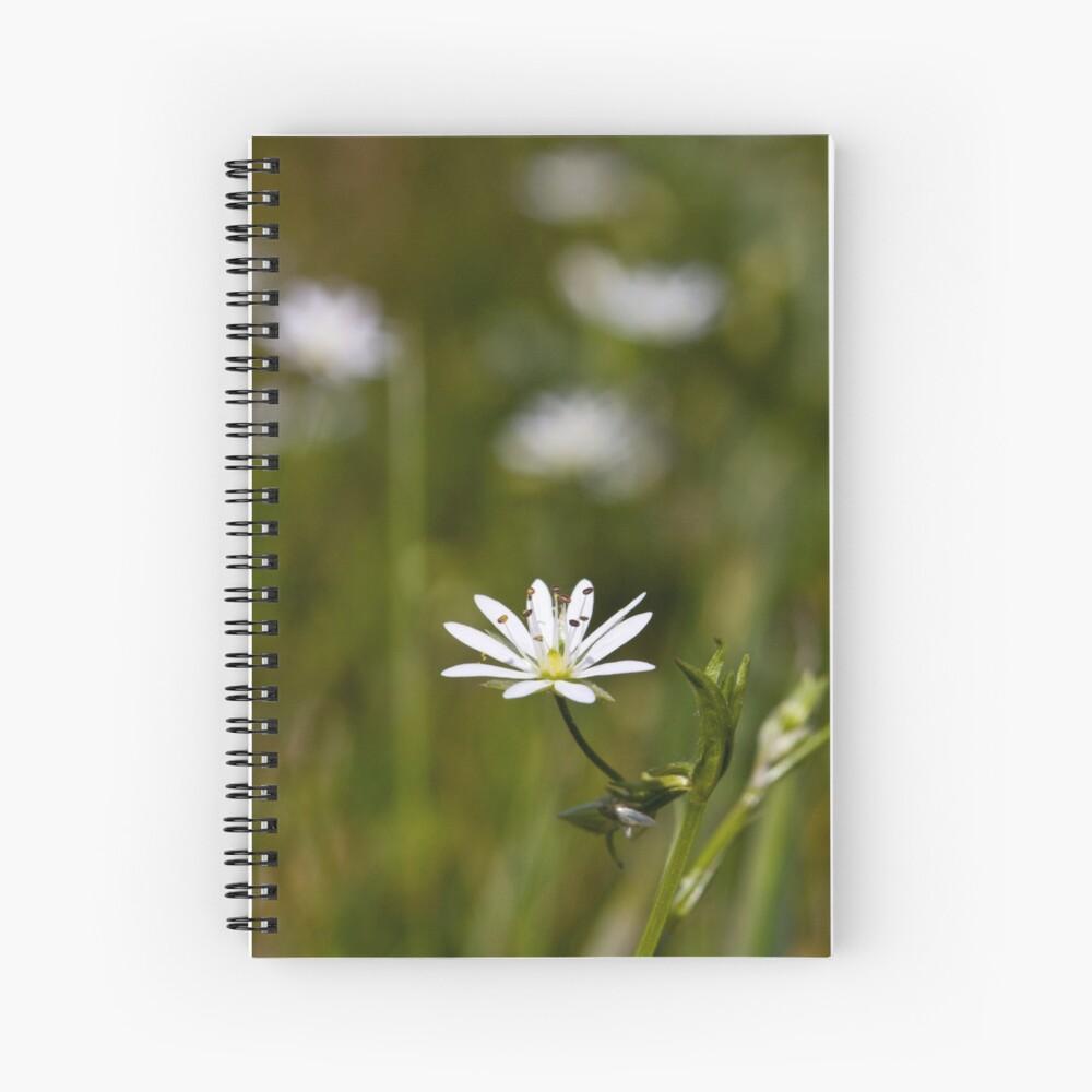 Lesser Stitchwort (Stellaria graminea) Spiral Notebook
