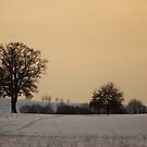 Winter Dusk by Kasia-D