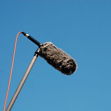 Shotgun Microphone with Wind Protector  by jojobob