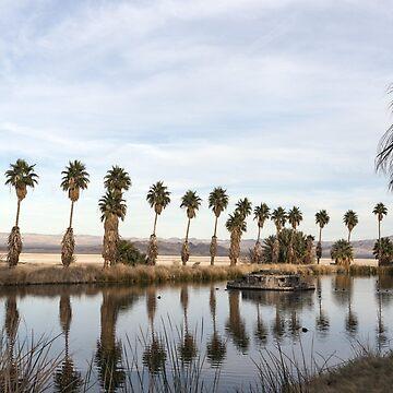 California Lake Lined Palm Tree Photograph  by BravuraMedia