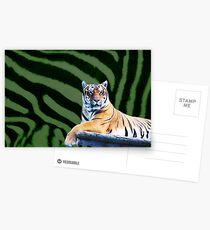Tiger Postcards