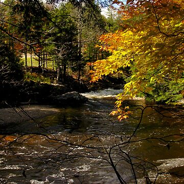 Fowler River in October by glowcat