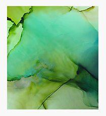 Moss Fluid Ink  Photographic Print