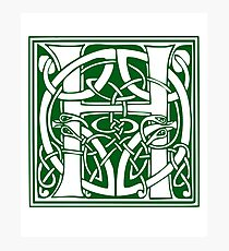 Ornate H Capital Letter Initial Lombard Green Photographic Print