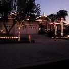 CHRISTMAS IN FLORIDA 2 by MsLiz