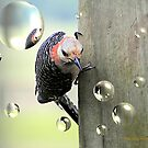 Hanging Around by Pat Moore
