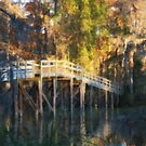 Turtle Bridge in Autumn by David Edwards