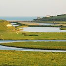 Cuckmere Haven by Irina Chuckowree