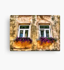 Urban contrast Canvas Print