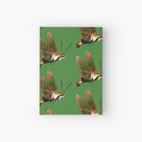Snowberry Clearwing Moth, Hemaris diffinis Hardcover Journal