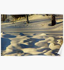 Snow Pillows Poster
