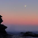 Venus and the Crescent Moon by Mike Salway