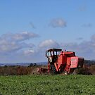 Fall on the Farm by vigor