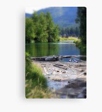 Lake swamp Canvas Print