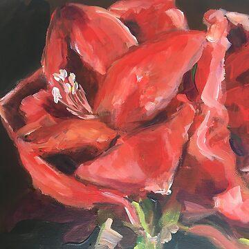 Amaryllis by Susan1964