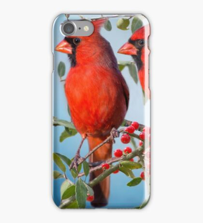 Red Birds and Red Berries iPhone Case/Skin