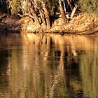 Late Afternoon on the Murray River, NSW by Christine Smith