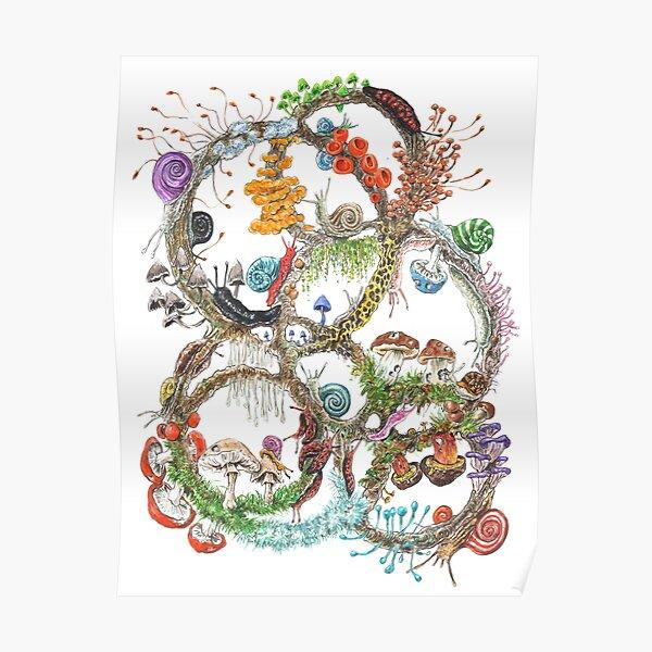 Schnecken & Pilze Poster