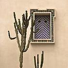 Cactus Djerba by jsebouvi