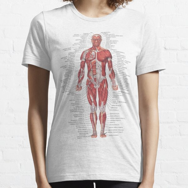 Muscular System of the Human Body Essential T-Shirt